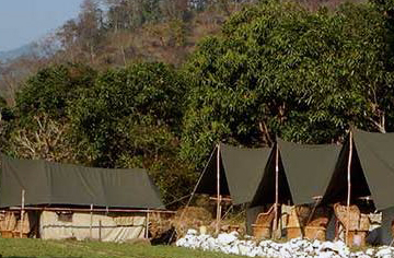 rishikesh budget camping