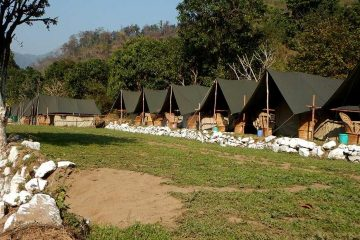 camp eagle nest rishikesh